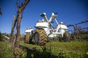Yanmar R&D Europe werkt samen met partners om deze zelfrijder met erop modulaire robotachtige landbouwtechniek te testen. - Foto: Yanmar