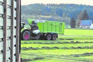 Deze Claas opraapwagen is gespot in het veld. Zichtbaar is de schuin naar voor staande voorkant met daarin een beweegbare voorwand. - Foto: Profi