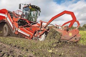 De HT 400-loofklapper geeft extra reiniging van de aardappelstroom, met name bij rassen met veel en/of taai loof.
