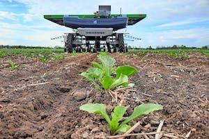 Südzucker test de FarmDroid FD20 momenteel op 1 hectare suikerbieten.